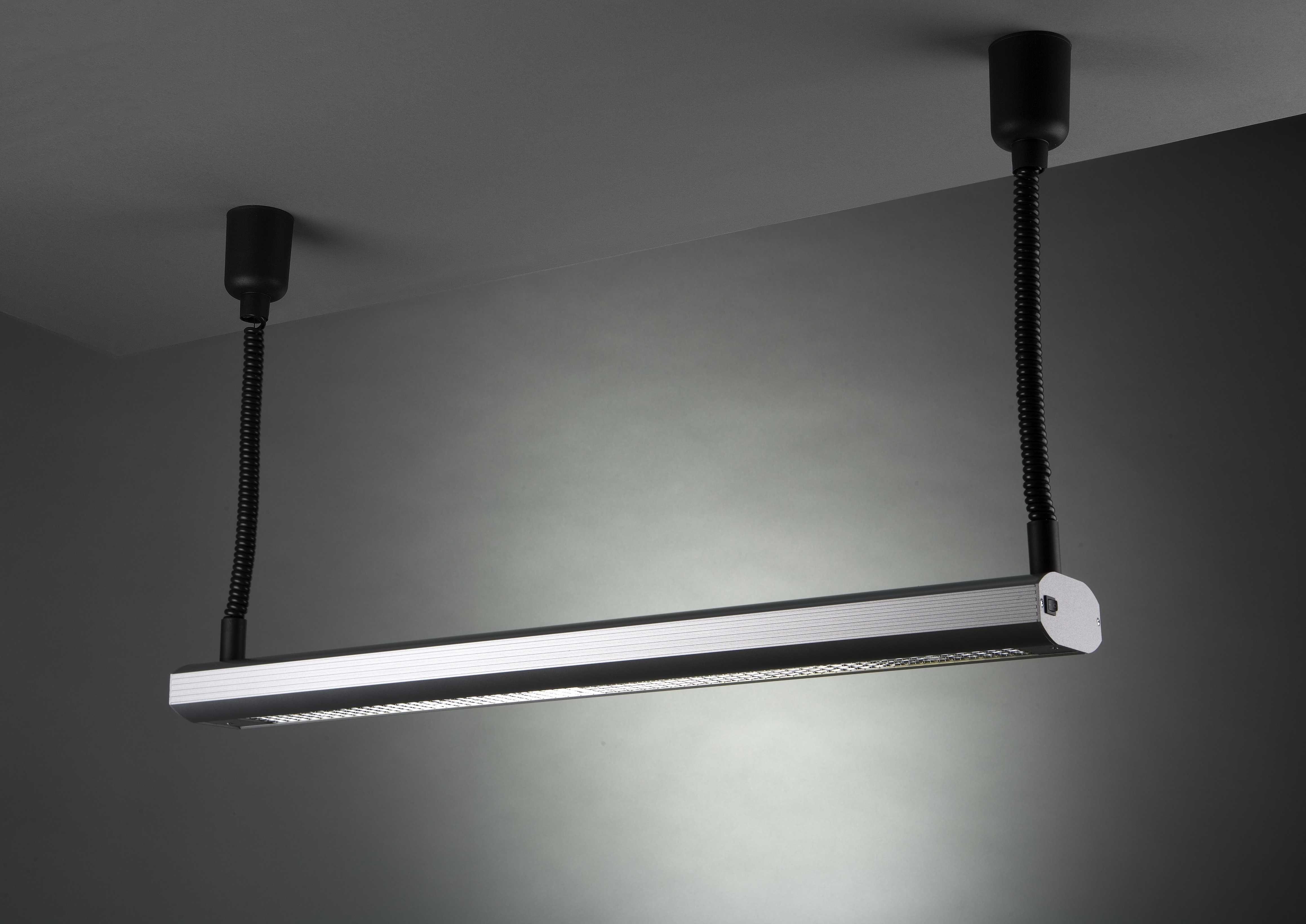 Basic P355 Seilpendelleuchte